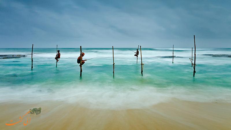 کوگالا در سریلانکا