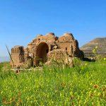 ممنوعیت دفن مرده در کاخ اردشیر بابکان