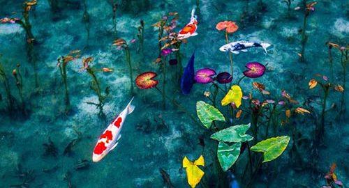 دریاچه مونت در ژاپن