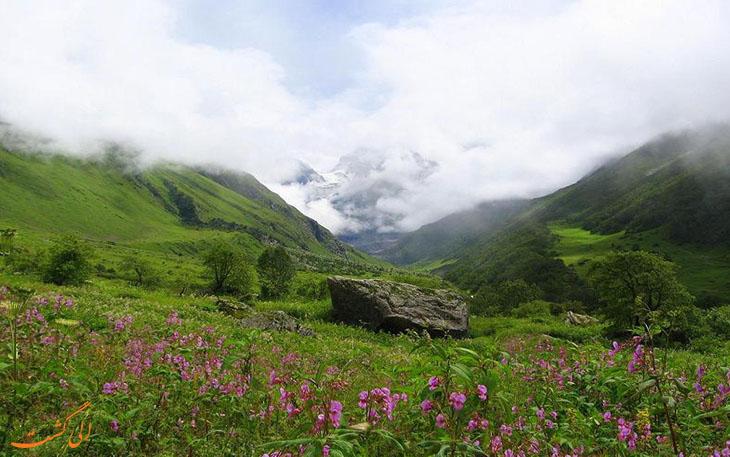 جاذبه های طبیعی هند