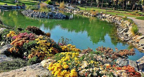 باغ مشهد