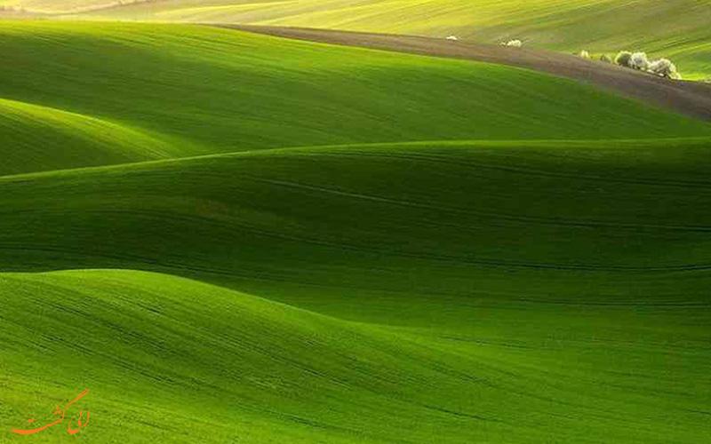 دشت های سبز