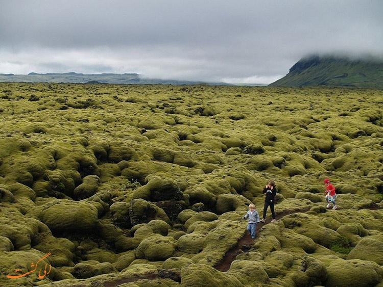 گردش در زمین های خزه ای ایسلند