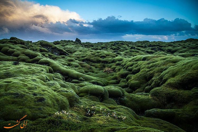 عکس زمین های خزه ای ایسلند