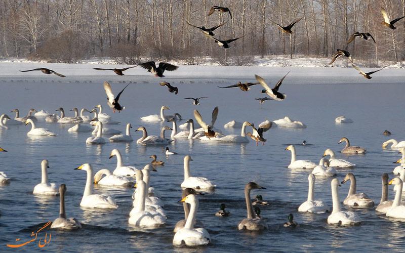 دریاچه عجیب سیبری
