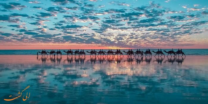 شتر سواری در ساحل غرب استرالیا