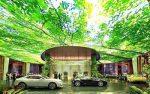 دبی اولین هتل دنیا با جنگل استوایی را می سازد