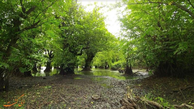 دریاچه متحرک در آستارا