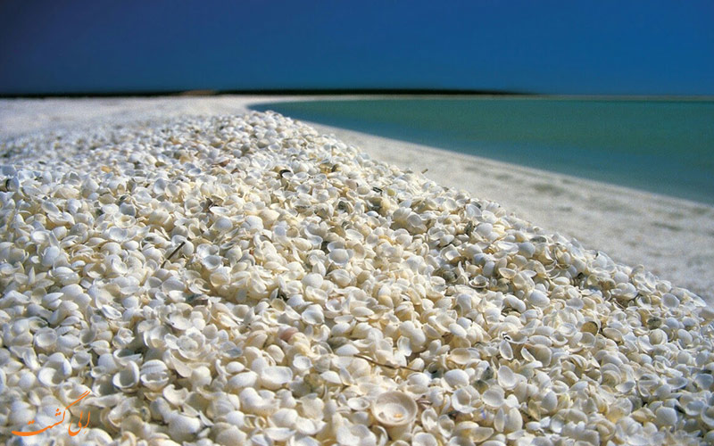 ساحل تماشایی استرالیا