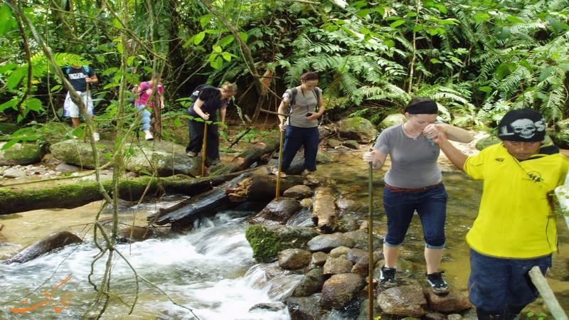 مسیر 10 ارتفاعات کامرون مالزی