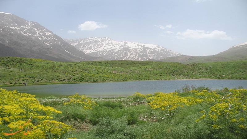 کوه گل سی سخت