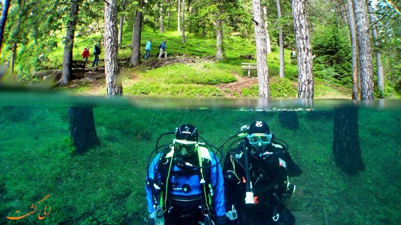 عکس های دریاچه گرین در اتریش