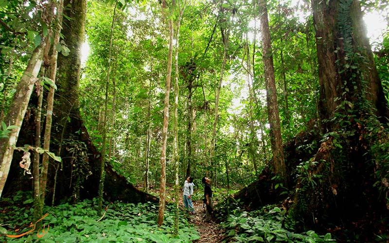پارک ملی تامان نگارا