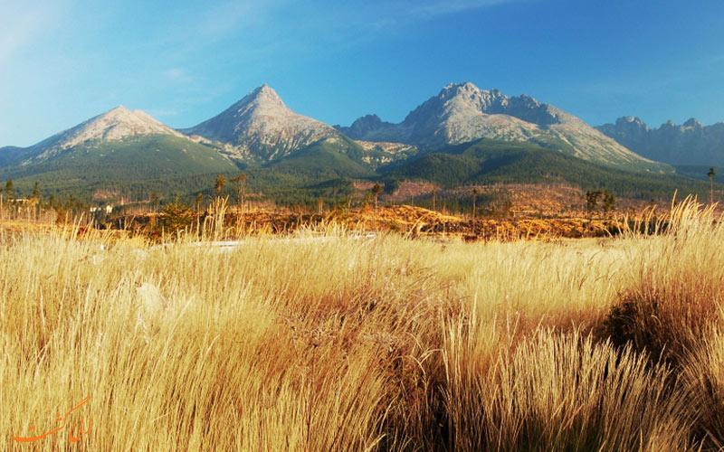 پوشش گیاهی کوهستان تاترا