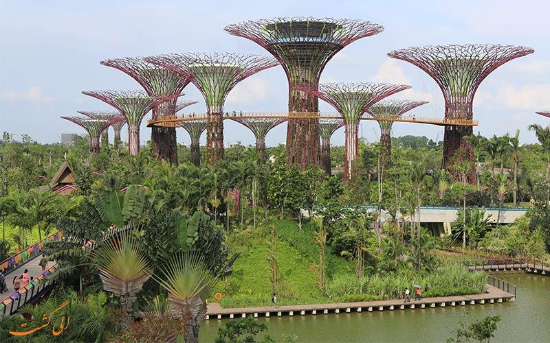درختان غول پیکر سنگاپور