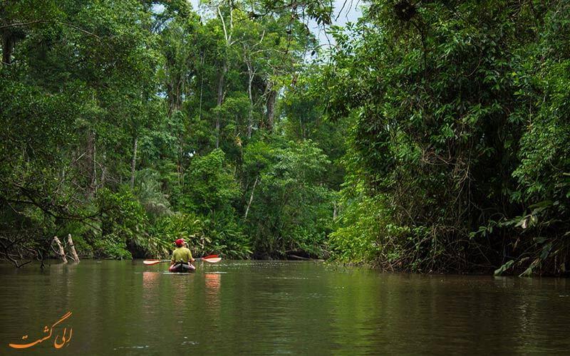 جنگل های آمازون کانو سواری