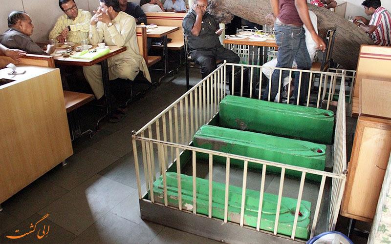 کافه نیو لاکی هند