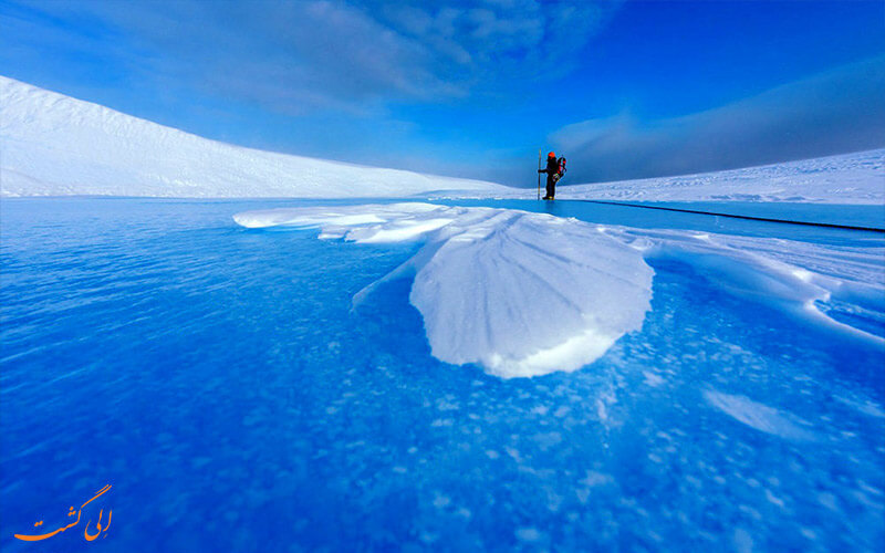 قطب شمال