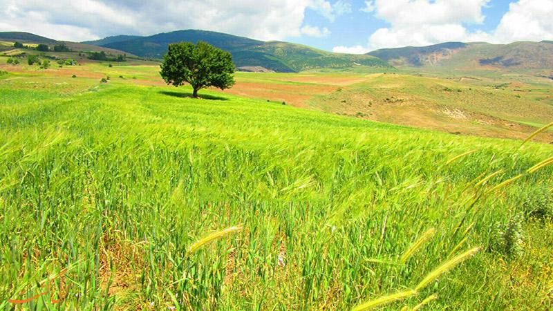 روستای دیلمان گیلان