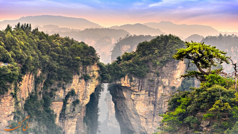 پارک جنگلی Zhangjiajie
