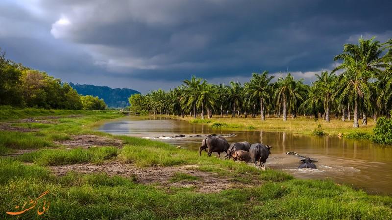 جنوب شرقی آسیا