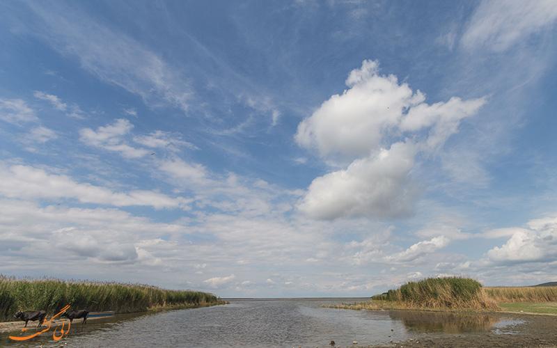 دریاچه نیوس