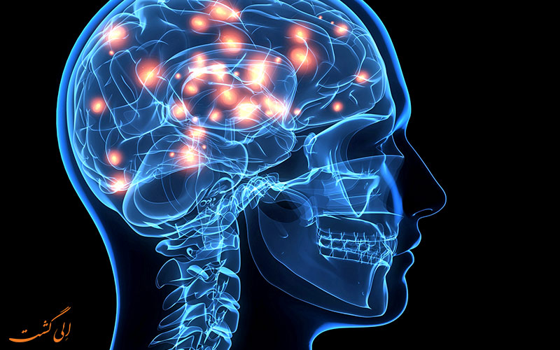 فعالیت بهتر مغز