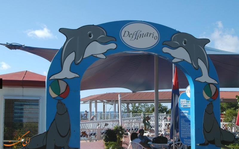 مرکز تفریحی دلفیناریوم در کوبا