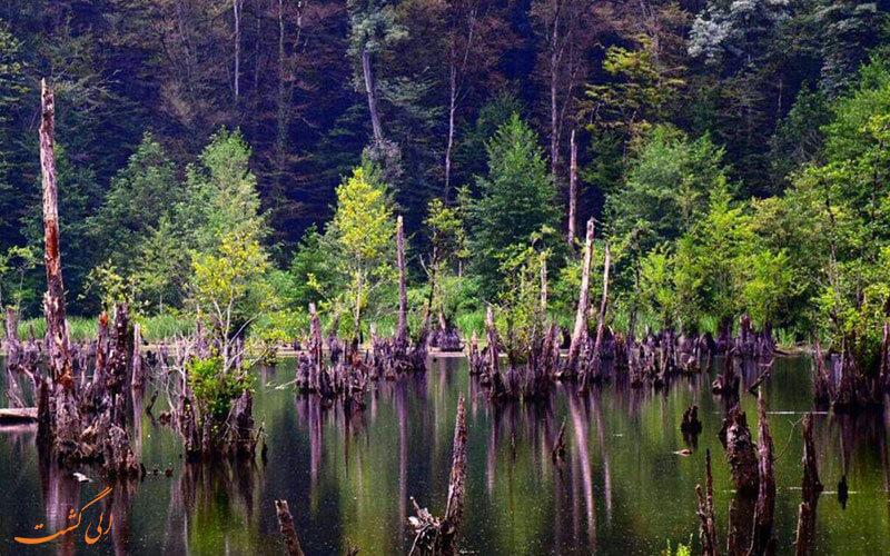 نمایی از دریاچه ی ارواح