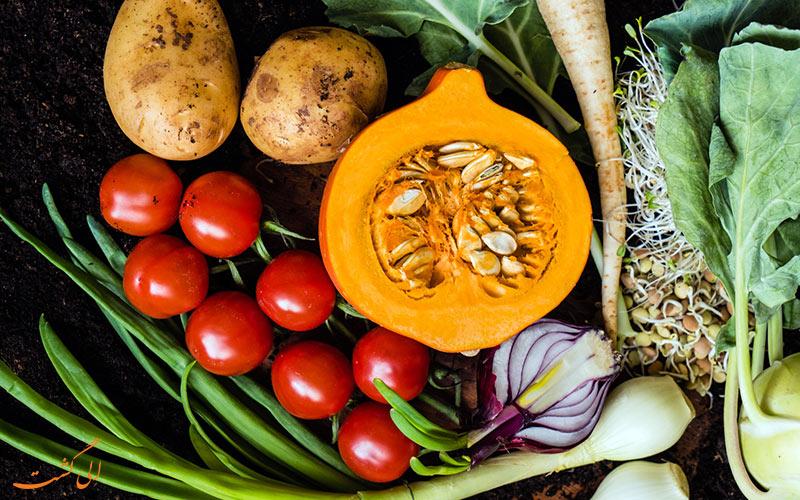 گیاهخواری در سفر