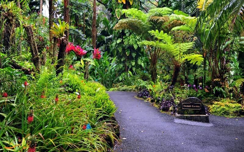 باغ های هاوایی