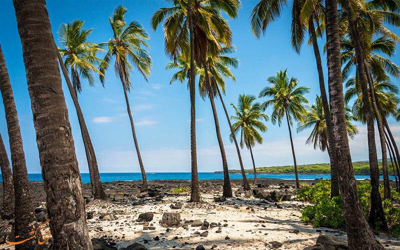 سواحل هاوایی