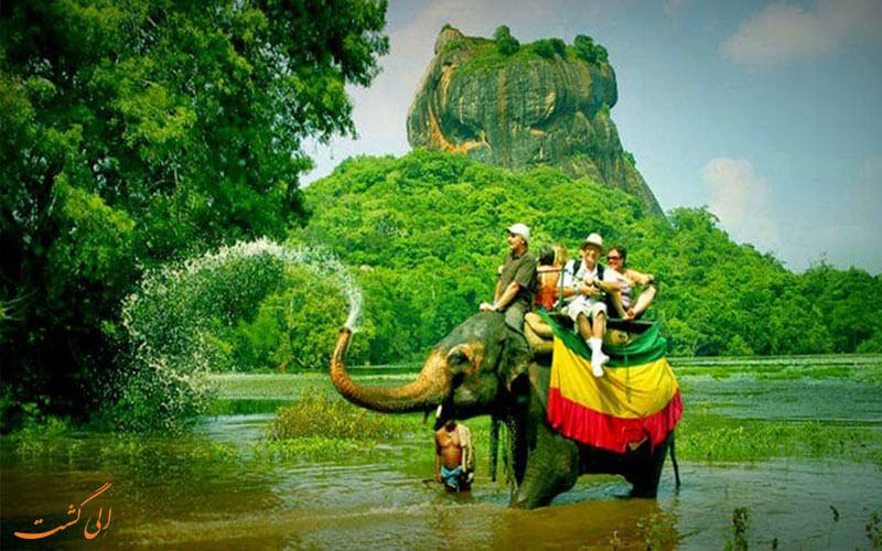 فیل سواری در سریلانکا