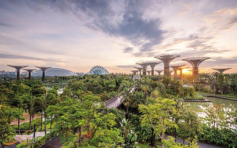 بهترین مسیرهای طبیعت گردی در سنگاپور
