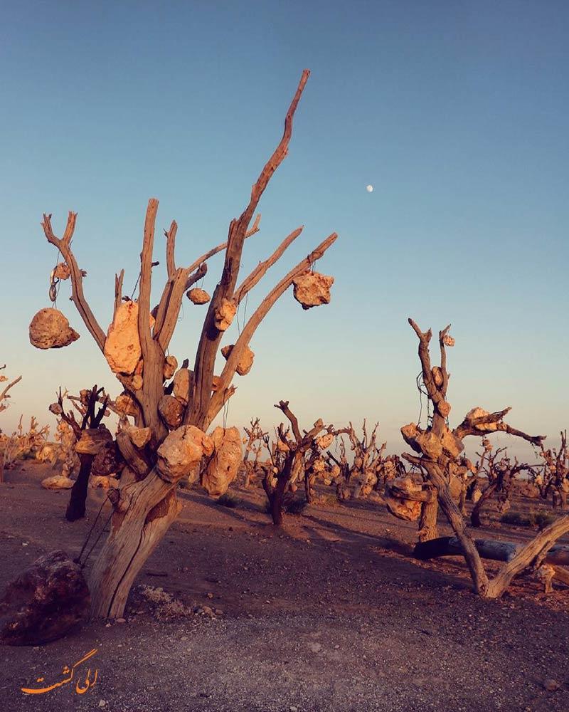باغ سنگی در سیرجان