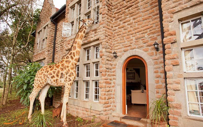 شهر نایروبی در کنیا