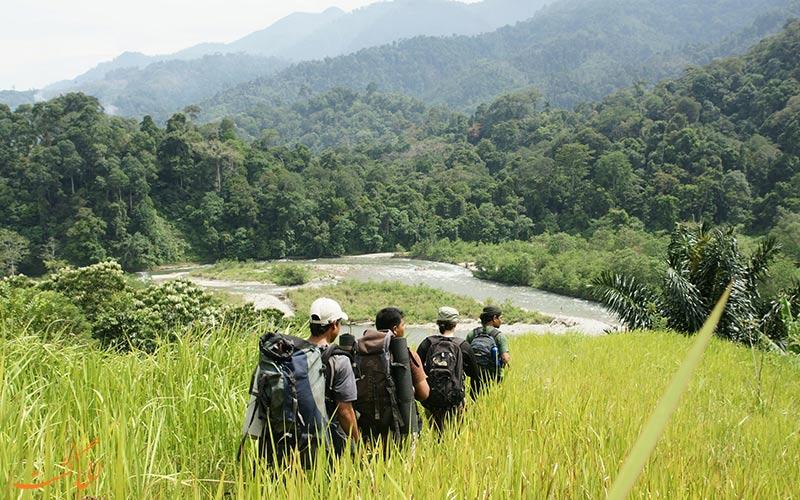 پارک ملی Gunung