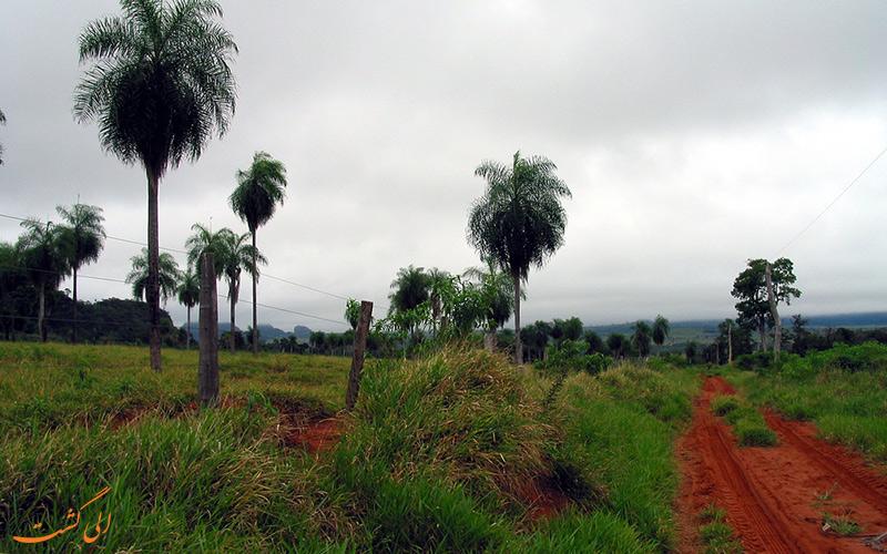 کشور پاراگوئه