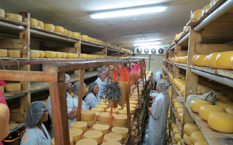 کارخانه پنیر نایروبی