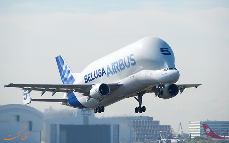 هواپیمای باربری ایرباس بلوگا نهنگ سفید
