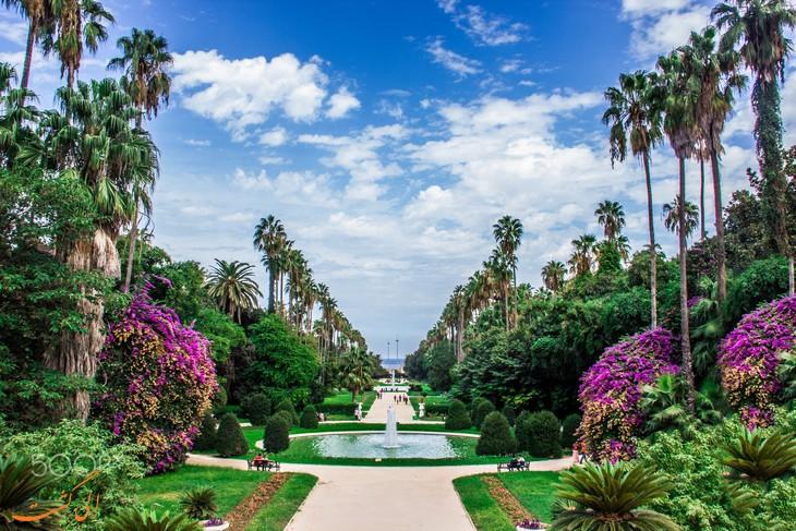 باغ گیاه شناسی الجزیره