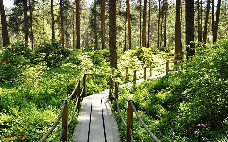 پارک مرکزی در فنلاند