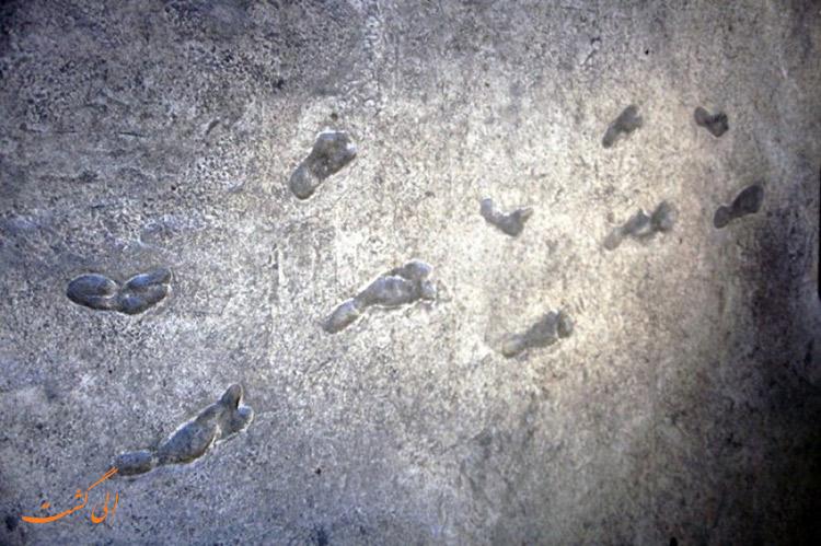 رد پای قدیمی ترین انسان نمای جهان