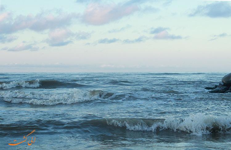 چرا دریای خزر کوسه ندارد
