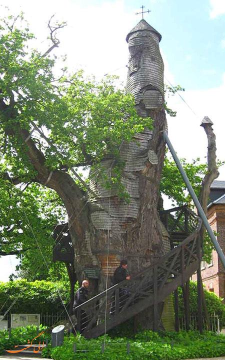 کلیسای سبز و درختی شن پال فرانسه