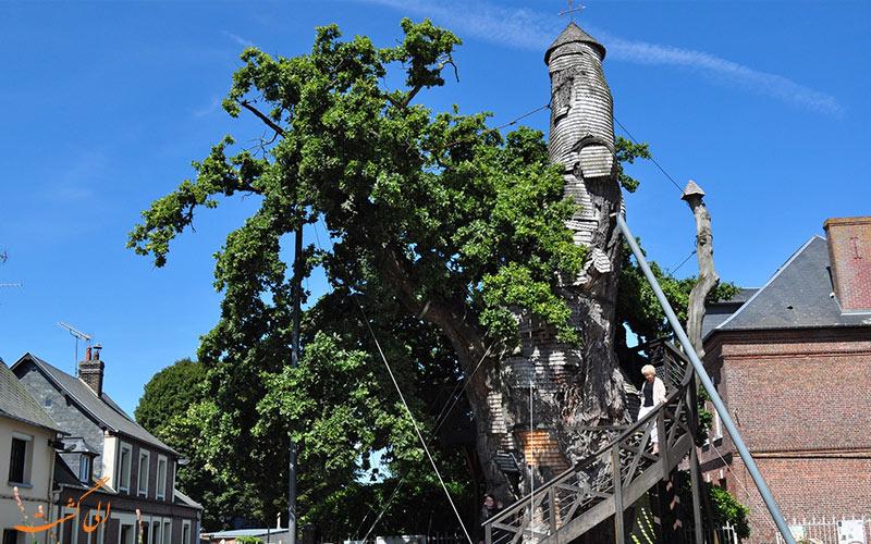 کلیسای درخت بلوطی شن پال