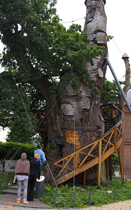 کلیسای درختی شن پال
