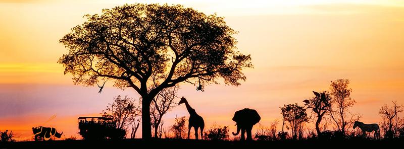 تور نوروز 97 | آفریقای جنوبی