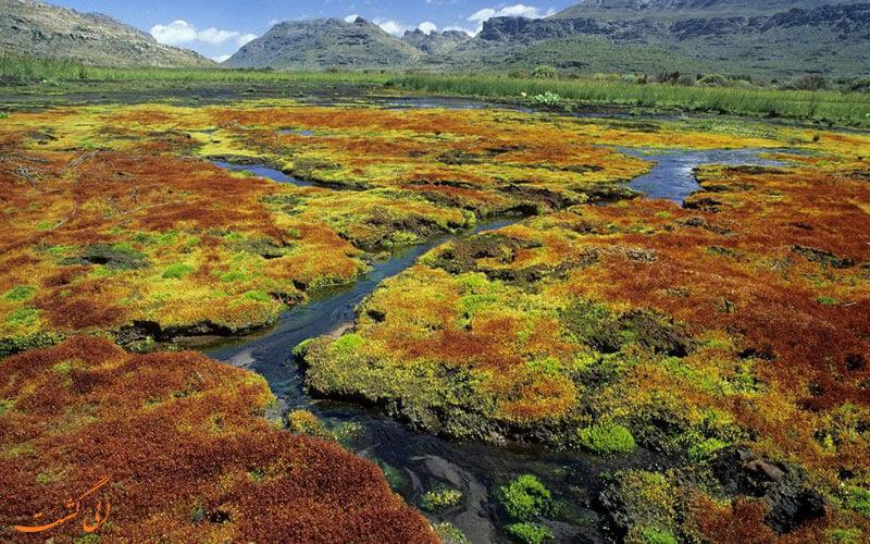 جاذبه های زیست محیطی آفریقای جنوبی