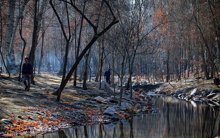 پارک وکیل آباد در مشهد